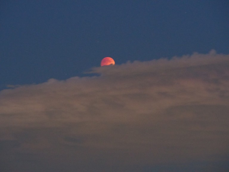 THE BLOOD MOON GRACES US WITH HER PRESENCE